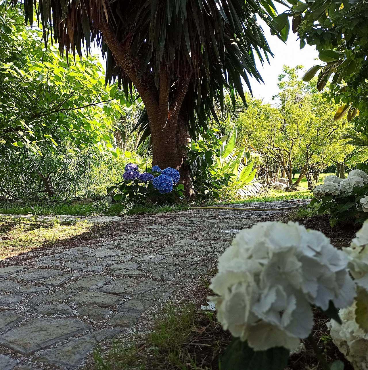 tenuta-sica-giardino